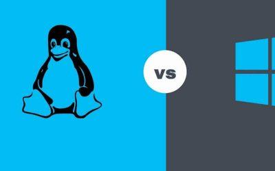 Hosting Linux y Windows ¿Cuáles son sus características?